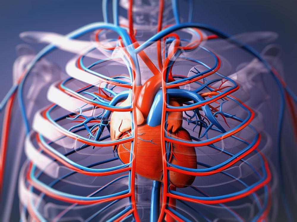 血液循环不顺畅的症状有哪些表现?图片